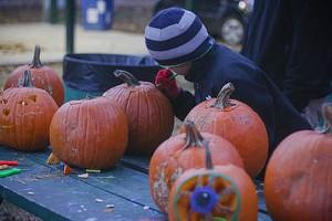 pumpkin-fest-15.jpg