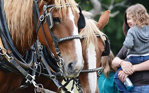 heritage-harvest-and-horse-festival.jpg