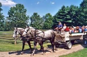 wagonridewed.jpg