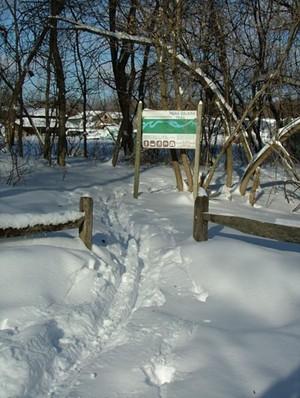 intervale_snowy_trail.jpg