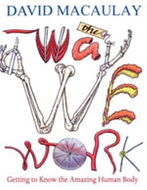 youthapolooza-thewaywework.jpg