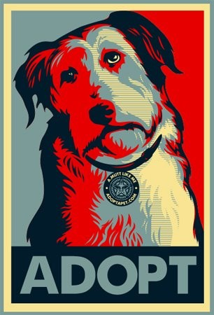 obama-adopt-757588.jpg
