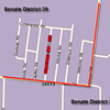 More Voter Shenanigans in Senate District 29?