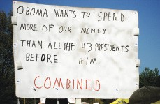 """About 1,000 people congregated at Audubon Park April 15th for a local """"tea party,"""" part of a national protest against taxes promoted by Fox News. - CHRIS DAVIS"""