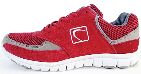 An ARCH shoe