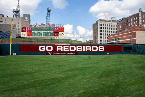 Redbirds_2.jpg