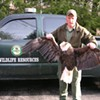 Another Bald Eagle Shot in Tennessee