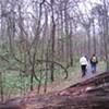 Citizens to Preserve Overton Park