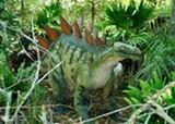 stegosaurus_small.jpg