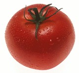 Do you know who grew this tomato?