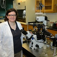 UTHSC Professor Receives $1.6 Million Grant For Obesity Research