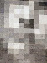 flyonwall_jaypixel.jpg