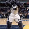 Grizzlies Home Opener Tonight