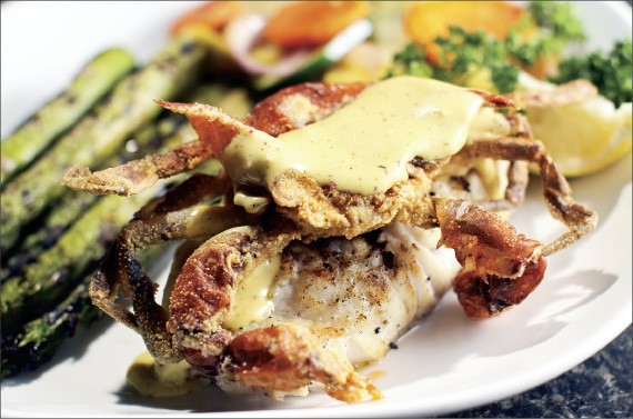 Gulf Coast influences direct the menu at Sharky's Gulf Grill in East Memphis.