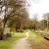Introducing the Vollintine-Evergreen Art Walk
