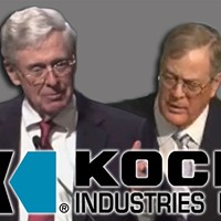 Koch Fight