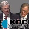 Koch Fight
