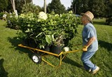 plant-sale2jpg-a22cc9a927bdec94_large.jpg