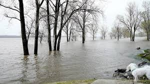 Mayors from Mississippi River towns told federal agencies they want to improve the river with flood control measures, for example.