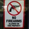 McMillan, Cammack Support Bredesen Veto of Gun Bill