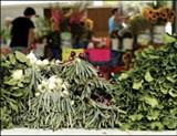 Memphis Farmers Market - JUSTIN FOX BURKS