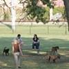 Memphis to Open First Dog Park