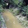 Midtown Water Woes