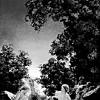 Nymphs & Fairies