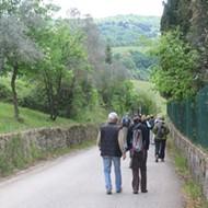 Tuscan Trails