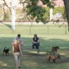 Memphis To Open First Dog Park Tomorrow