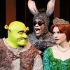 shrek at the orpheum