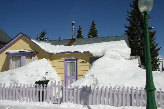 1.1205676960.snowed-in.jpg
