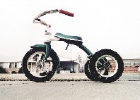 Still life with tricycle: an iconic image from   William Eggleston in the Real World