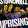 <i>Stonewall Uprising</i> on WKNO