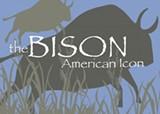 bison_2-thumb5.jpg