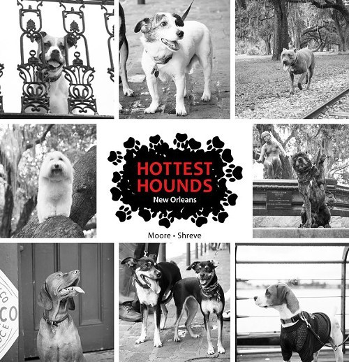 The cover of the recently released New Orleans edition of Hottest Hounds
