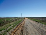 The dirt road leading to Cash's Dyess, Arkansas, childhood home - GREG NERI