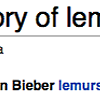 The Elusive Bieber Lemur
