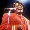 Elvis Versus James Brown: Who's the King?