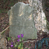 The Grave Mystery at Shelby Farms