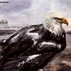 The Oily Bird Special