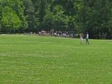 NAOMI VAN TOL - The Overton Park greensward
