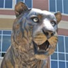 Thinking About Memphis Tiger Football