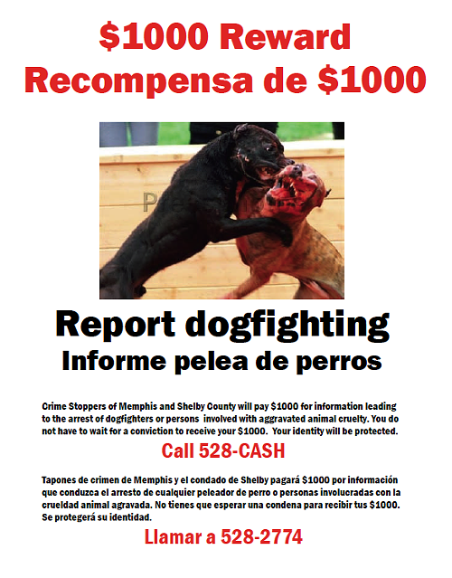 This flier is being distributed to raise awareness of the CrimeStoppers dogfighting reward money.