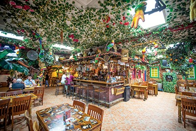 Mi Tierra is covered from top to bottom with colorful decorations and fake parrots. - PHOTOGRAPHS BY JUSTIN FOX BURKS