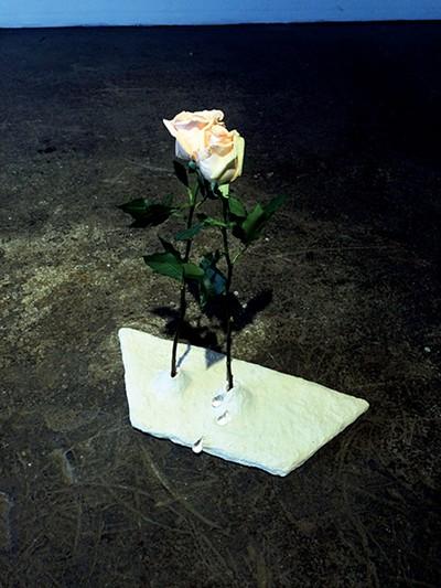 werec_flowers.jpg