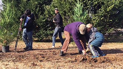 Get Off Our Lawn plants new trees at Overton Park. - TOBY SELLS