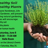 Healthy Soil and Healthy Plants