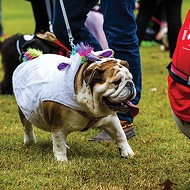 Dogs on Parade: Mardi Growl at Overton Park Saturday