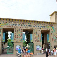 Memphis Zoo Study Provokes Controversy
